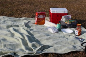 Had a Surprise Picnic Lunch